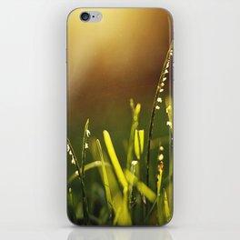 Summer Light iPhone Skin