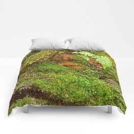 Moss Hysteria Comforters