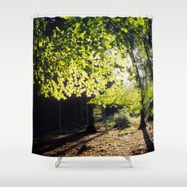 The Woods in Spring Shower Curtain