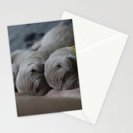 Cute puppy by Nathalie SPEHNER Stationery Cards