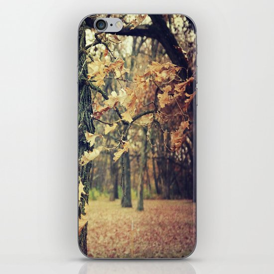 Wilted Beauty iPhone & iPod Skin