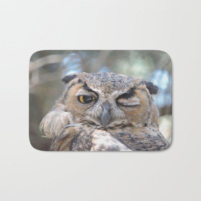 Owl Wink Bath Mat