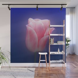 Romantic Pink Solo Tulip On Blue Background Wall Mural