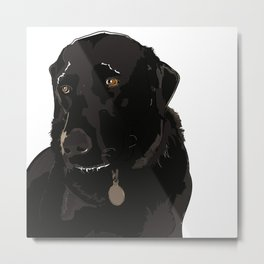 Labrador dog face (black) Metal Print