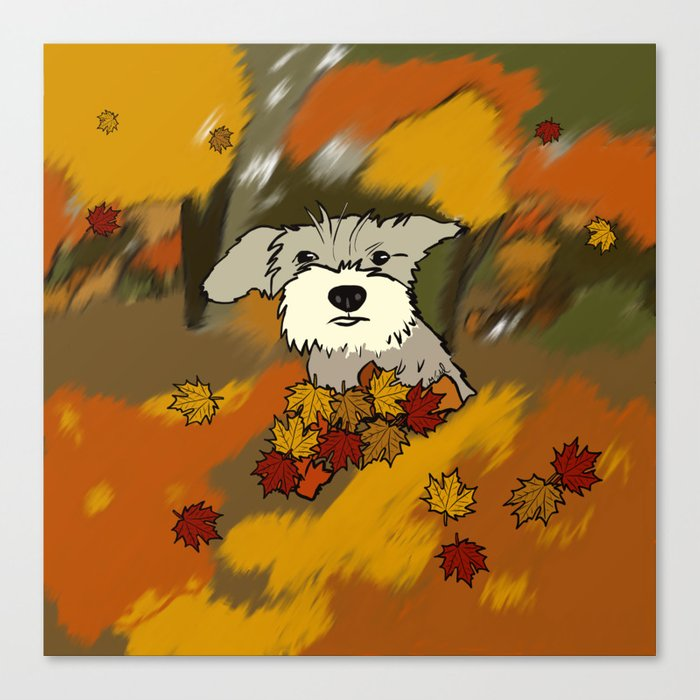 Buck The Schnauzer In Fall Leaves Canvas Print
