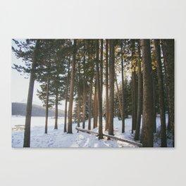 Lake side Canvas Print