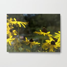 plight of the bee IV Metal Print