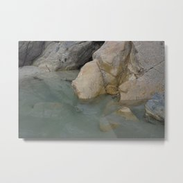 Green Water Rock Pool Metal Print