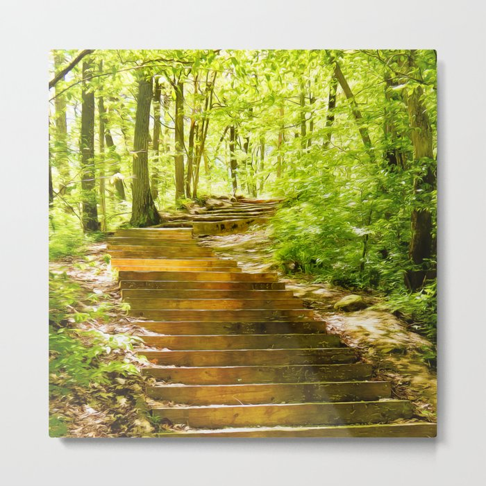 Steps Through The Forest Metal Print