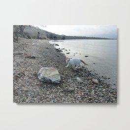 Silver Shore Metal Print