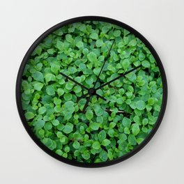 Covering Wall Clock