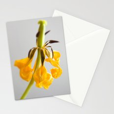 'DYING TULIP' Stationery Cards