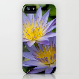 Purple Water Lily Flowers iPhone Case