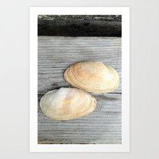 Two Deer Isle Shells Art Print