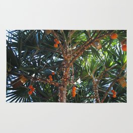 Tropical Breeze Rug