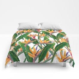 bird of paradise pattern Comforters
