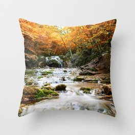 Autumn Forest Waterfall Throw Pillow