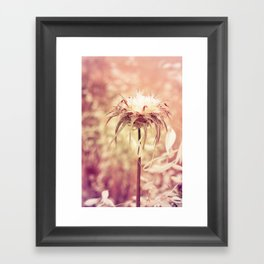 Recalling the summer Framed Art Print