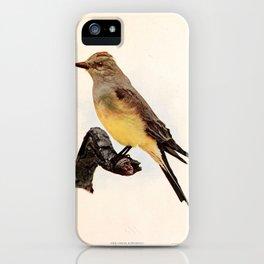 Arkansas Kingbird tyrannus verticalis1 iPhone Case