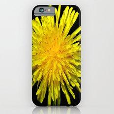 A Dandy Dandelion iPhone 6s Slim Case