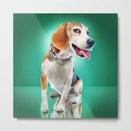 Super Pets Series 1 - Super Buckley Metal Print