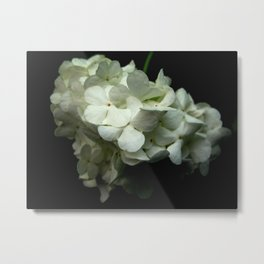Bloomin' Onion Metal Print