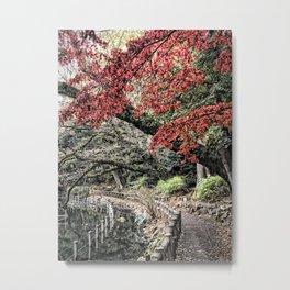 Inokashira Park in the Fall, Tokyo, Japan Metal Print