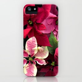 Colorful Christmas Poinsettias, Scanography iPhone Case