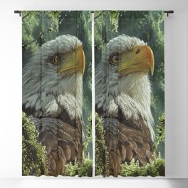 Bald Eagle - High and Mighty Blackout Curtain