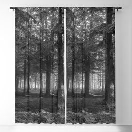 Black and white forest - North Kessock, Highlands, Scotland Blackout Curtain