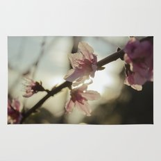 Peach Blossoms Rug