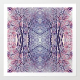 The Enchanted Forest No.3 Art Print