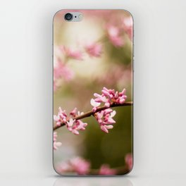 Beautiful Light iPhone Skin