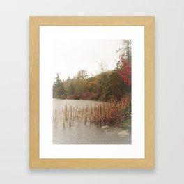 Deer Lake Decrescendo Framed Art Print