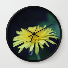 Lion's-tooth - beautiful weed Wall Clock