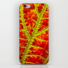 leaf abstract II iPhone & iPod Skin