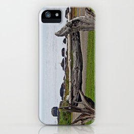 Driftwood Fence and the Sea iPhone Case
