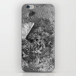 Ray Roberts 01 iPhone Skin