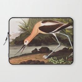 American Avocet by John James Audubon Laptop Sleeve