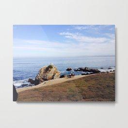 17 mile drive beach - California Countryside Metal Print
