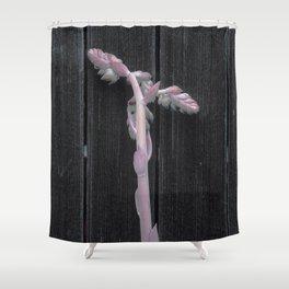An Arduous Climb Shower Curtain