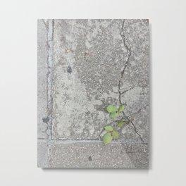 Geometry of life vol.67 Metal Print