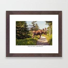 Skyline Trail, Cape Breton Framed Art Print