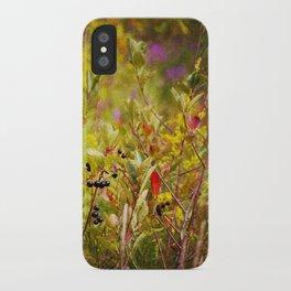 Fall Field iPhone Case