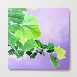 Sycamore Leaves Over the Water Metal Print