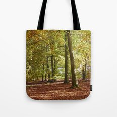 Autumnal beech trees in a natural woodland. Norfolk, UK. Tote Bag