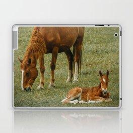 Horse And Foal Laptop & iPad Skin