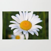 daisies Area & Throw Rugs featuring Daisies by Rose Etiennette