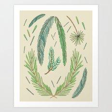 Pine Bough Study Art Print