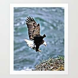 BALD EAGLE NESTING Art Print